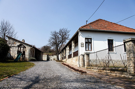 Tokaj Nobilis Winery - photo by hegyaljafoto.hu